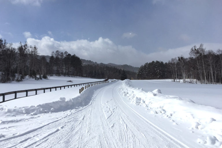 長野の冬の撮影スポット!雪景色を求めて訪れた開田高原&白川氷柱群